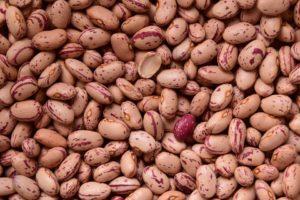 Fagioli nutrienti fondamentali